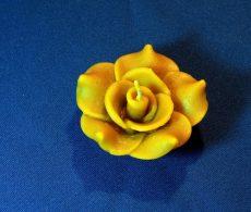 Rózsa 7cm